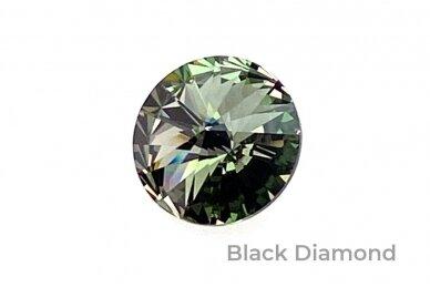 Apyrankė su Swarovski kristalais AP337350000 5