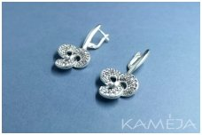 Earrings with Swarovski Crystal A1945501060