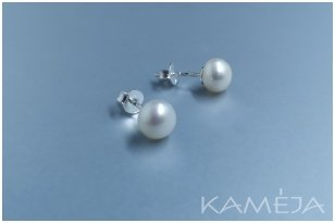 Earrings with cultivated freshwater pearl A391800150