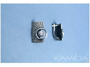 Earrings with Cubic Zirconia A2741350620