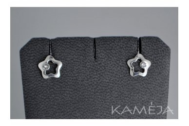 Earrings with Swarovski Crystal A3006500110