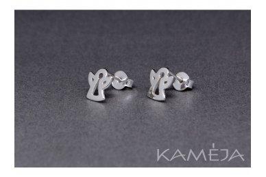 Sterling Silver Earrings A2818500100