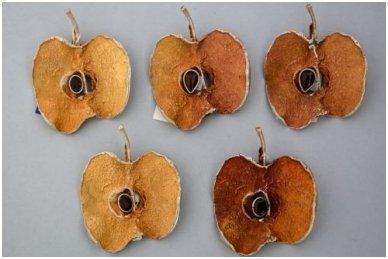 Sidabrinė sagė - obuolys SA218352050 2