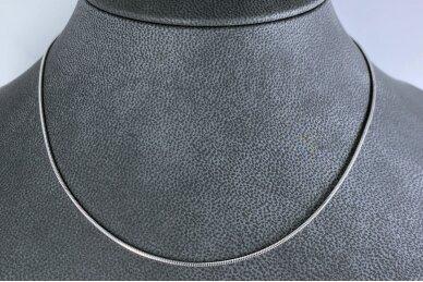 Rodžiuota sidabrinė grandinėlė 2