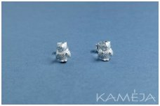 Sterling Silver Owls A2133500140