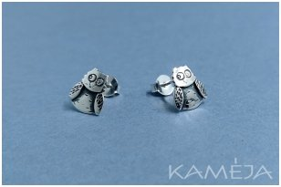 Sterling Silver Owls A2704500140