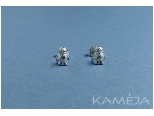 Sterling Silver Owls A2134500130