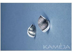 Sterling Silver Earrings A3131350450