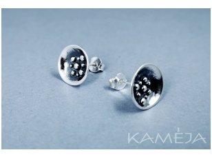 Silver Earrings A3174400270