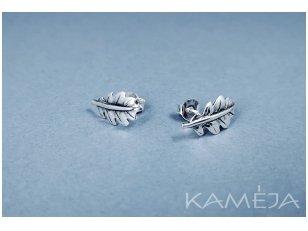 Oak Leaf earrings A3165500120