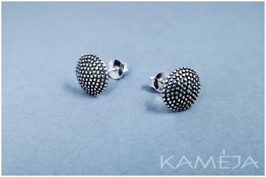 Silver Earrings A3173400200