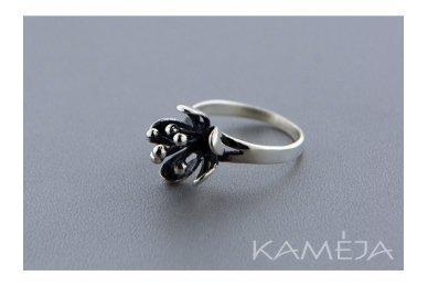 Sidabrinis žiedas Z1694350300 2